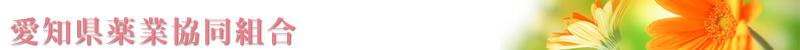 愛知県薬業協同組合